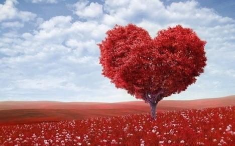 eper magas vérnyomás ellen magas vérnyomás hatása a szívre